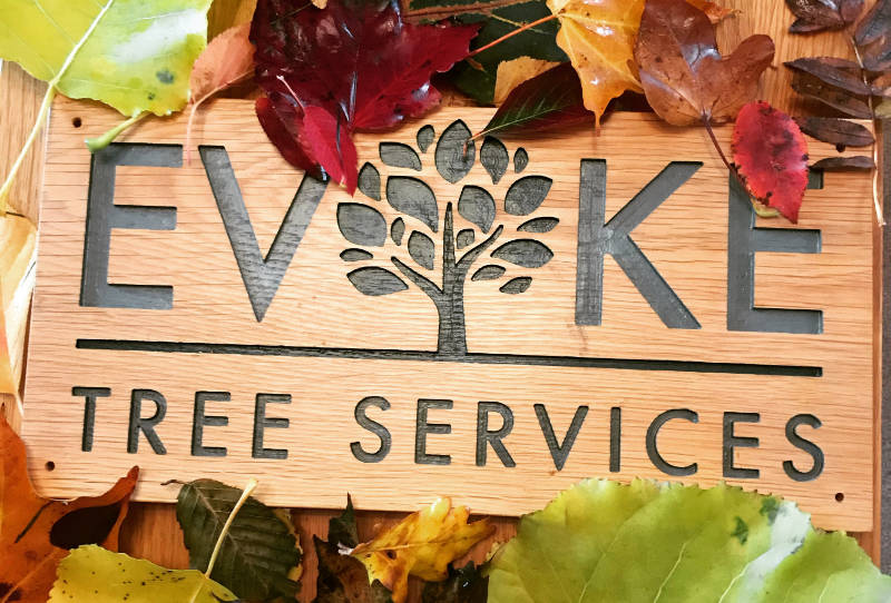 Evoke tree services logo on wood